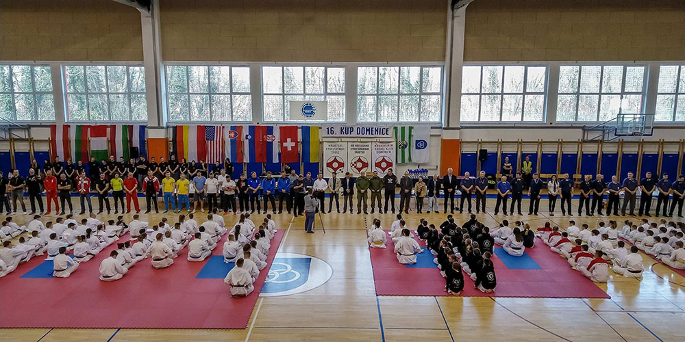 Kyokushin karate - 16. Kup Domenice